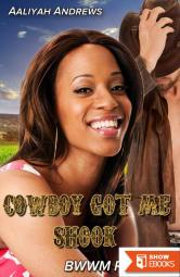 Cowboy Got Me Shook (BWWM Romance)