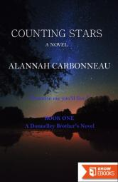 Counting Stars (A Donnelley Brother's Novel)