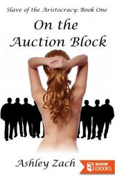 Slave of the Aristocracy: Book One – On the Auction Block