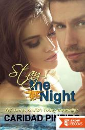 Stay the Night: A Navy Seal Erotic Romance (Take a Chance Book 4)