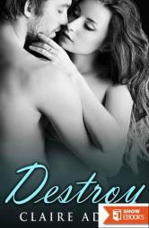 Destroy (A Standalone Romance Novel)