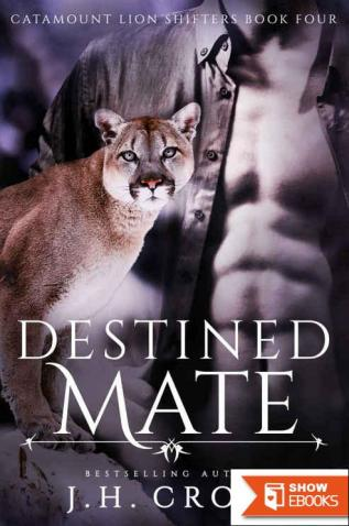 Destined Mate, Paranormal Romance