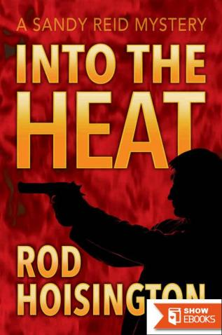 Into the Heat (Sandy Reid Mystery Series Book 6)