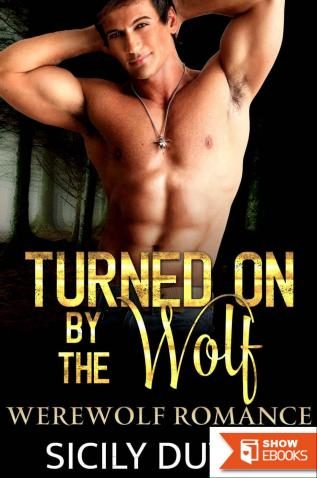 ROMANCE: Turned on by the Wolf (Paranormal Werewolf Shifter Sweet Romance) (New Adult Holiday Contemporary Romance Short Stories)